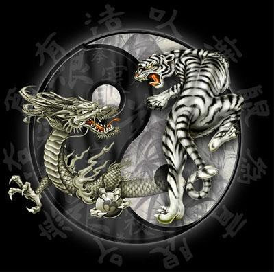 dragonpictures